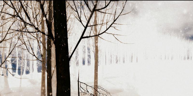 5 Top Design Events: Dec. 23, 2011 – Jan. 27, 2012